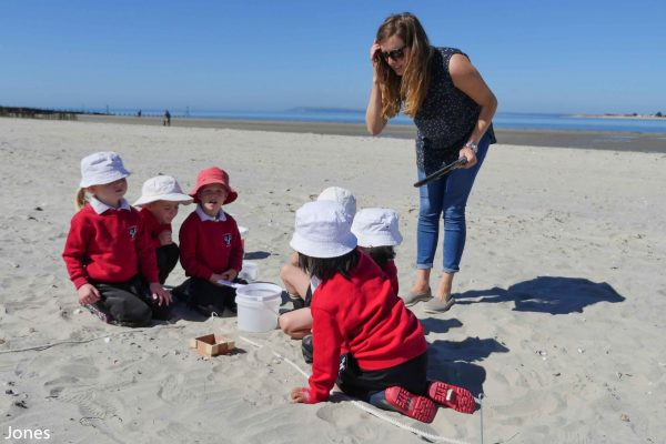children finding microplastics in the sand
