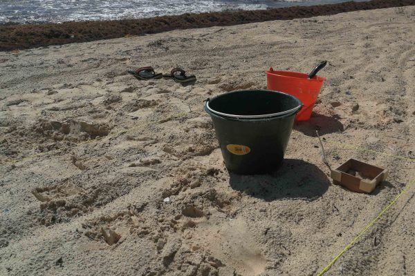 buckets in the sand