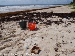 measuring microplastics in sian kaan