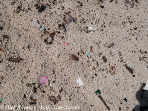 microplastics in the sand
