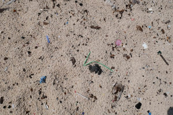 sian kaan microplastics in the sand