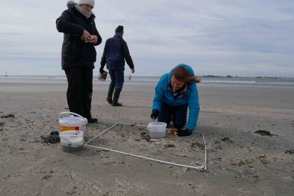 Volunteers collecting microplastic samples