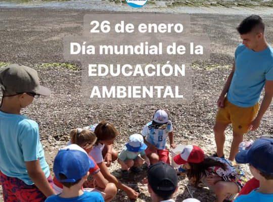 Argentina BMS Jan 2020 (6)